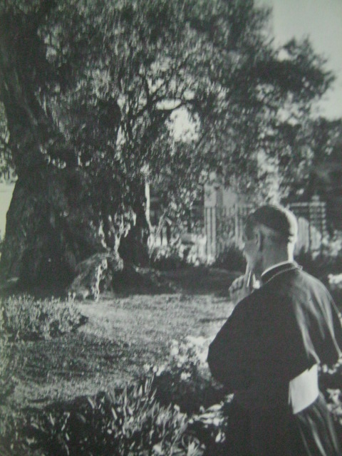 Si Obispo Fulton J. Sheen habang nananalangin sa Hardin ng Hetsemani.  Kuha ni Yousuf Karsh mula sa This Is The Holy Land.