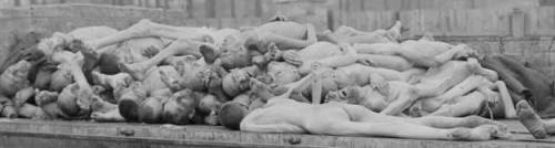 26 Isang milyong iba pang mga pasaway sa Nazi, mga may kapansanan, mga bading, at mga Saksi ni Jehovah