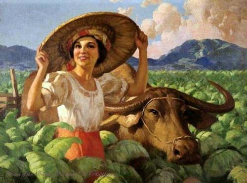 Woman In Tobacco Field