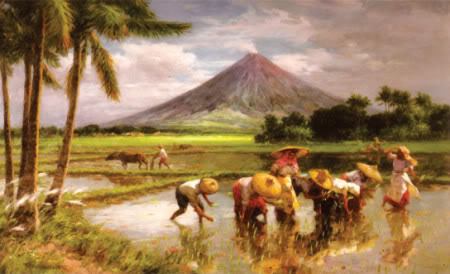Rice Planting na may Bulkang Mayon bilang background.