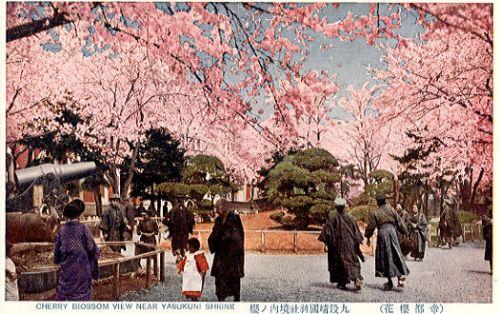 Mga cherry trees ng Yasukuni Shrine.  Mula sa auelib.aichi-edu.ac.jp
