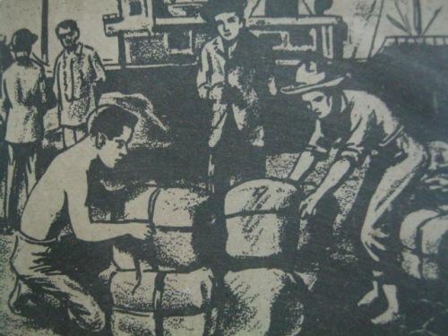 SI Rizal bilang mangangalakal ng abaka.  Mula kay Diosdado G. Capino at Virginia M. Buenaflor.