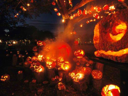 Pumpkin o jack-o-lantern.  Mula sa National Geographic.